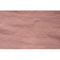 Sea Pink-20